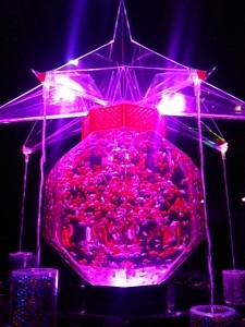 「超・花魁」と名付けられた巨大な水槽